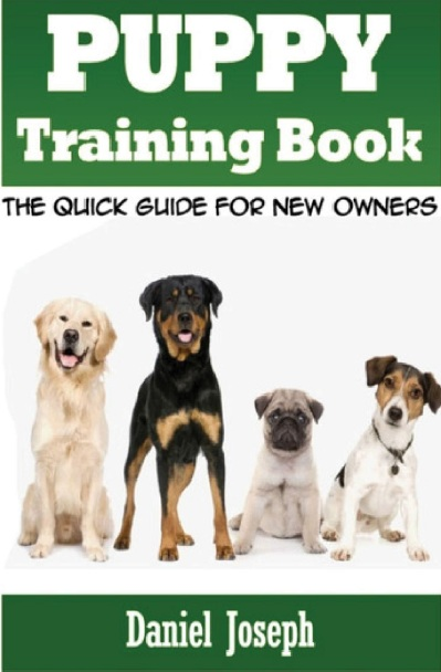 How to have an Effective lead generation with Mini book